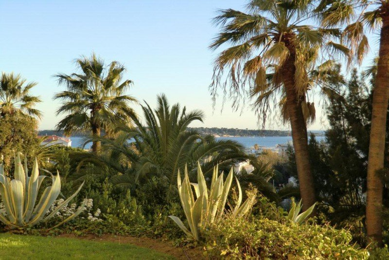 Image_2, Appartement, Cannes, ref :3881